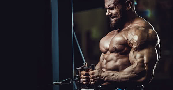 You don't only have to get muscles, but you should be able to keep them.